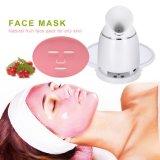 Zorg 100% van het gezicht de Natuurlijke GezichtsHulpmiddelen van het Masker van de Groente van het Fruit DIY verjaagt Masker die van het Fruit van de Sproet het Eigengemaakte de Machine van het Masker van het Gezicht witten