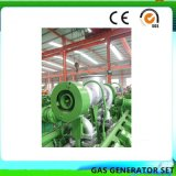 La versión más reciente en 2018 Syngas generador (75KW).