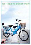 En 2018 Meilleur Prix Ville verte aide de la pédale Parent-Child vélo électrique, Ville de vélo électrique