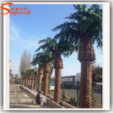 Для использования внутри помещений искусственного Palm Tree крупных искусственных Дата Palm Tree