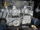 Tasuno 기어 펌프 장치의 수출상