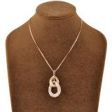 De populaire Halsband van de Juwelen van Crsytal van het Netwerk van het Ontwerp Gouden Holle