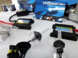 2 Ballastおよび2 Xenon LampのAC 55W H10 HID Light Kits