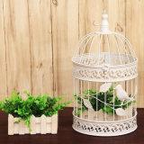 정원 Decoration를 위한 최신 Sale Metal Bird Cage