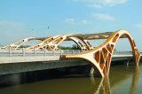 SGS keurde de Snelle Geassembleerde Structuur van het Staal van de Brug goed