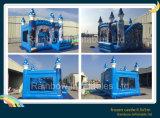 Meilleure vente château gonflable, congelés gonflables de location de château gonflable (RB2015-1)
