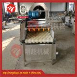 ثمرة يغسل [سد-بي] جانب فرشاة يصقل/تنظيف يعالج معدّ آليّ