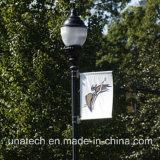 Calle poste ligero del metal que hace publicidad del sistema colgante del indicador de la bandera (UNA80)