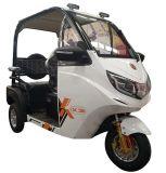 Smart инвалидных колясках для 3 пассажиров без дверей в жаркую погоду