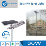 15W/20W/30W/40W/50W/60W/800W 조정가능한 태양 전지판을%s 가진 태양 가로등