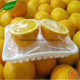 L'imballaggio fresco dell'alimento aderisce pellicola