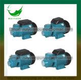 Pompe en laiton de vortex de câblage cuivre de turbine de Bomba de l'eau Qb60/Qb70/Qb80