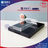 Black Square Plastic Food Tray