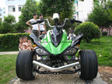 3 ruedas de carreras/Quad ATV 250cc