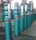 Qj Bewässerung-Edelstahl-Zylinder-versenkbare tiefe wohle Pumpe