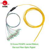 Jacket Ribbon Fan-out de fibra óptica Pigtail
