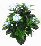 Искусственние заводы и цветки завода Gu-Yy0564-2h-10br Hydrangea