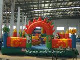 子供のための健康の楽園の膨脹可能な城