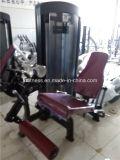 Equipo para Deportes abdominal Máquina (XH911)