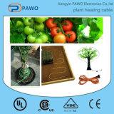 Specilizing no cabo de aquecimento 220V/80W de Prodocing para o calor da planta