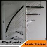 Balaustrada de vidro do trilho do balcão do aço inoxidável/a de vidro do balcão com padrão americano