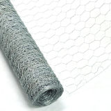 China Manufacturer Galvanized Chicken Wire Mesh para Coops (CWM)