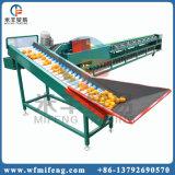 De Oranje Sorteerder van uitstekende kwaliteit van de Sorterende Machine van het Fruit