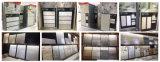 3D-Inkjet verglaasde de Binnenlandse Ceramische Tegel van de Muur voor Woonkamer (CP307)