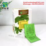 Hipertensão arterial Saúde Ginkgo Biloba Chá chá de ervas chá de ervas medicinais