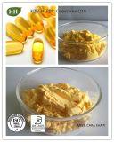 Professionele Coenzyme Van uitstekende kwaliteit Coq10 van de Vervaardiging