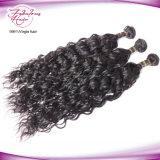 Fabricant de cheveux en gros Indian Human Virgin Hair Weft