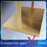 Estante de la promoción del estante de la exposición del estante de la percha del estante de visualización del acero inoxidable del estante de visualización del soporte de visualización (YZ161808)