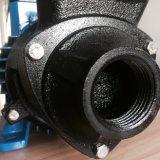 Turbulenz-Pumpe der Sonnenenergie-210W, Bewässerung-Pumpe, schwanzlose Gleichstrom-Pumpe