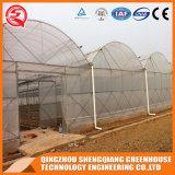 Estufa galvanizada do plástico do frame de aço de MERGULHO quente de China