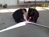 2kw с систем энергии ветра решетки для домов