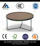 Hzct012 Lomaのコーヒーテーブルは家具に金属をかぶせる