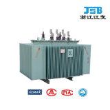 transformador inmerso en aceite de la distribución 11kv/15kv/20kv/22kv/24kv