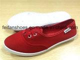 女性の注入のズック靴の余暇の履物の平らな靴(FFCS1219-03)