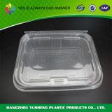 طعام إستعمال بلاستيكيّة طعام يعبّئ وعاء صندوق
