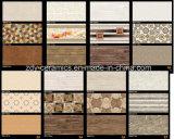 Het Bouwmateriaal van de Ceramiektegel van de Tegel van de muur