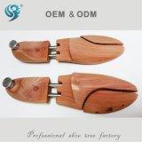 Европейская древесина вала ботинка, хранитель ботинка