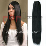Remy Hair Hair Weft Extension (PPG-l-01541)の完全なCuticle