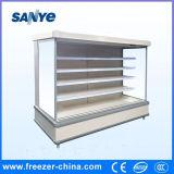 O mantimento Refrigerated a caixa aberta do congelador do indicador da fruta com Ce