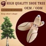 Am meisten benutzter europäischer hölzerner Schuh-Baum, zum von Schuh-Form zu halten