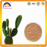 Polvere naturale dell'estratto della spremuta del cactus del Nopal