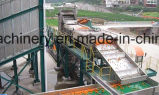 Terminar a linha de processamento do sumo de laranja