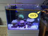 luz ajustável do diodo emissor de luz do aquário dos peixes de 23/33/43/53/76cm