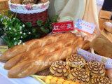 직업적인 고품질 빵 생산 라인 빵집 가스 갱도 오븐