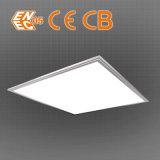 Construido en la luz del panel LED abajo blanco cálido con LM80 Fuente de luz