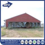 Типы конструкции дома цыплятины для слоев в ферме Кении